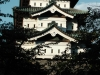 The castle of Hirosaki
