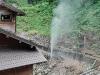 small geyser at Jigokudani Monkey park