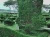 greening Bush man